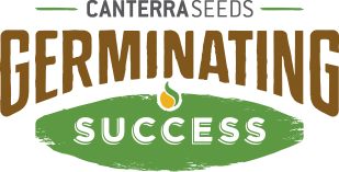 CANTERRA SEEDS - Germinating Success