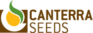CANTERRA SEEDS - Seed the Difference