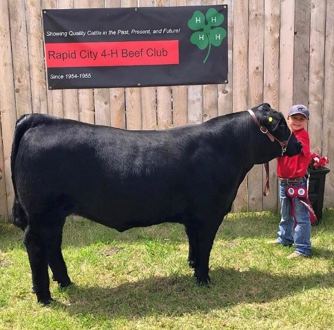 Graycen van Meijl – member of 4H in the Rapid City 4H Beef Club