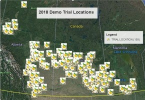 2018 Canola Trials.jpg
