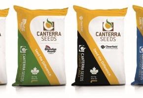 2020 Seed Bag Lineup