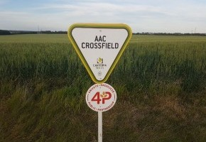 AAC Crossfield.jpeg