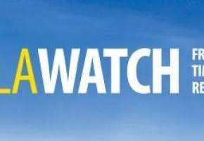 Canola Watch.jpg