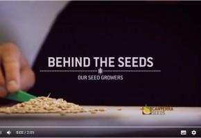 Our Seed Growers 2.jpg