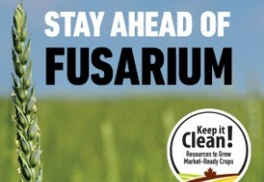 Keep-it-Clean-Control-Fusarium