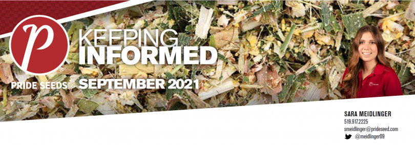 September_2021_-_PRIDE_Newsletter_header.png