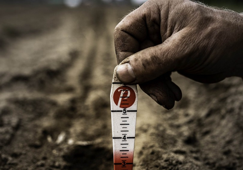 hand_and_seed_gauge-cropped.jpg