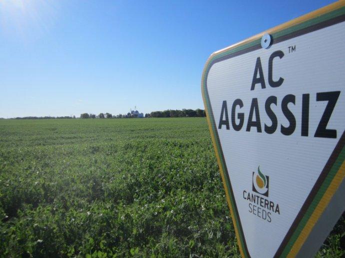 AC_Agassiz_(Virden)1.JPG